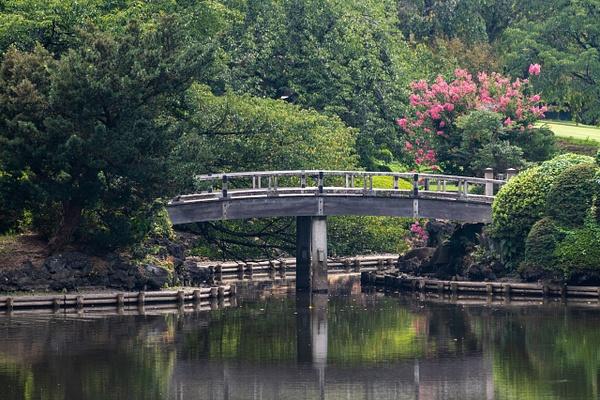 Day 7 Shinjuku Gyoen National Garden by Willis Chung