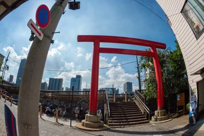 Day 12 Walk to Sumiyoshi Jinja Shrine