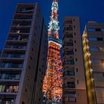 Day 13 Tokyo Tower Views