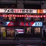 Day 16 Ueno Night Scenes
