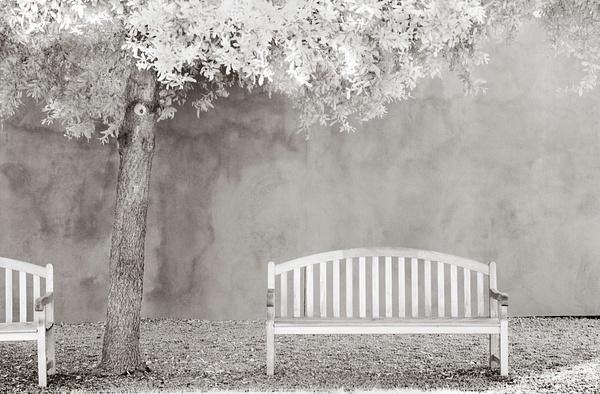 1F infrared by Ellen Lee