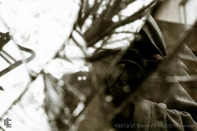 LCB photography