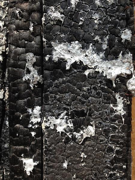 Texturas Liceu by ClaudioCastro