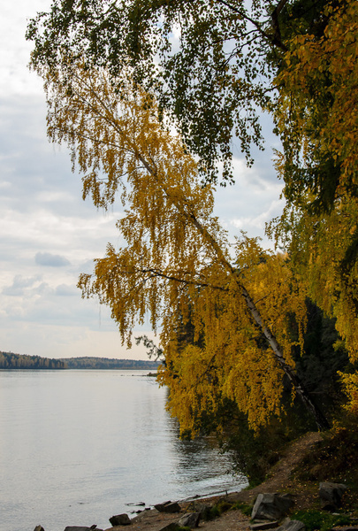 20120923-_DSC0021 by Constantine Voronin