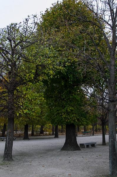 20121108-151650-NIKON_D5100 by Constantine Voronin