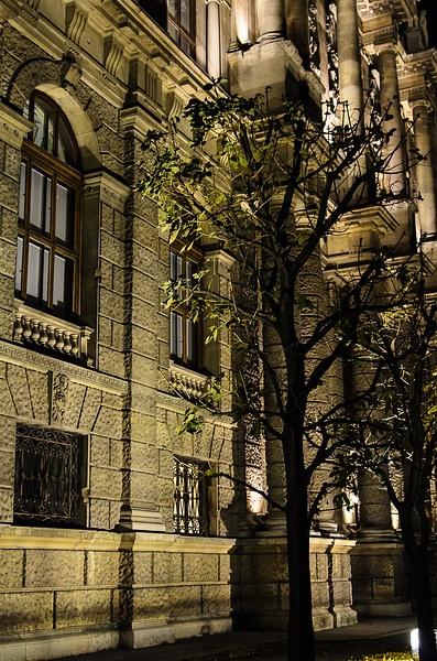 20121108-175548-NIKON_D5100 by Constantine Voronin