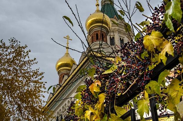 20121111-125531-NIKON_D5100 by Constantine Voronin