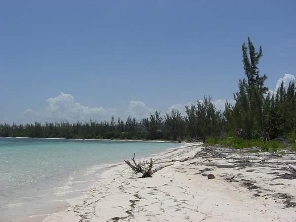 More and more natural beach
