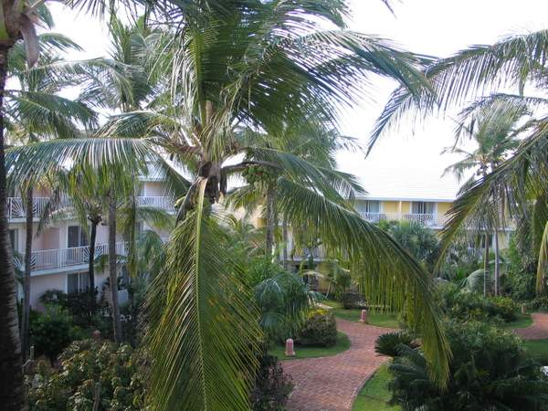Garden View from rear of Imperial Suite One