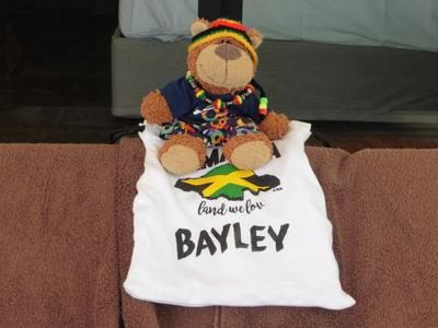 Bayley the well travelled bear