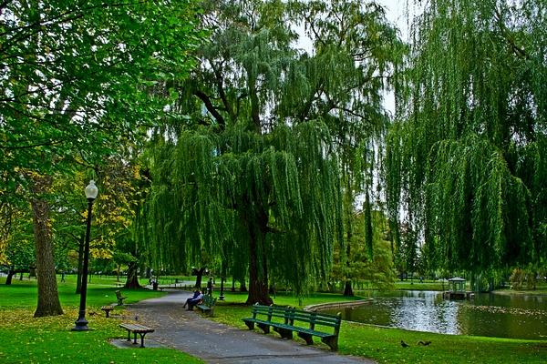 Boston_Garden_Park by DMont