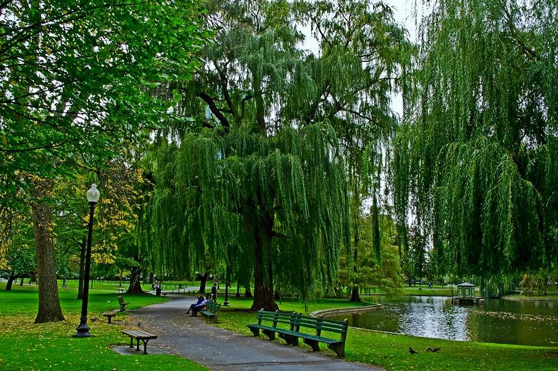 Boston_Garden_Park