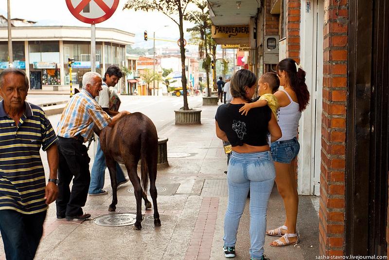 20120316_Pereira_20