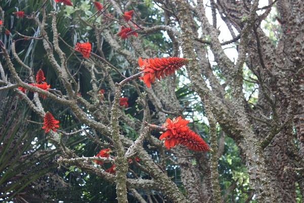 Hawaii 2012, Part 6 by EricHartzell