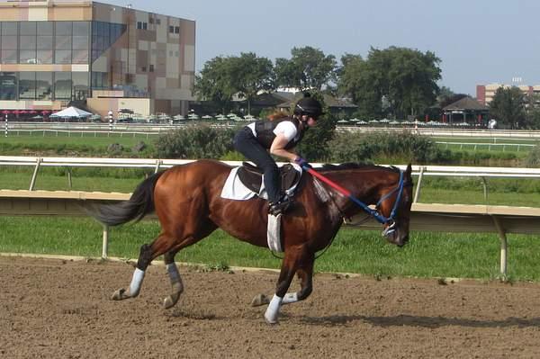jockey amanda maria