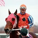 Parx Racing 11/18/2012