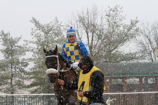 Parx Racing 03/16/13 by femalejockeys