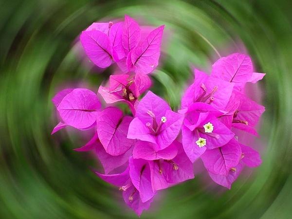 2012-10-18 23:09 by PriyaSasi968