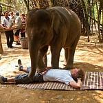 2009/April Thailand