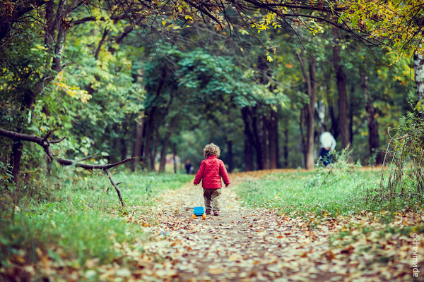 Парк by ViktorTerekhov