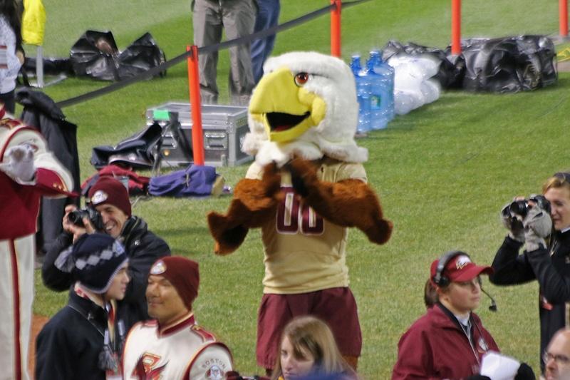 The BC Eagle
