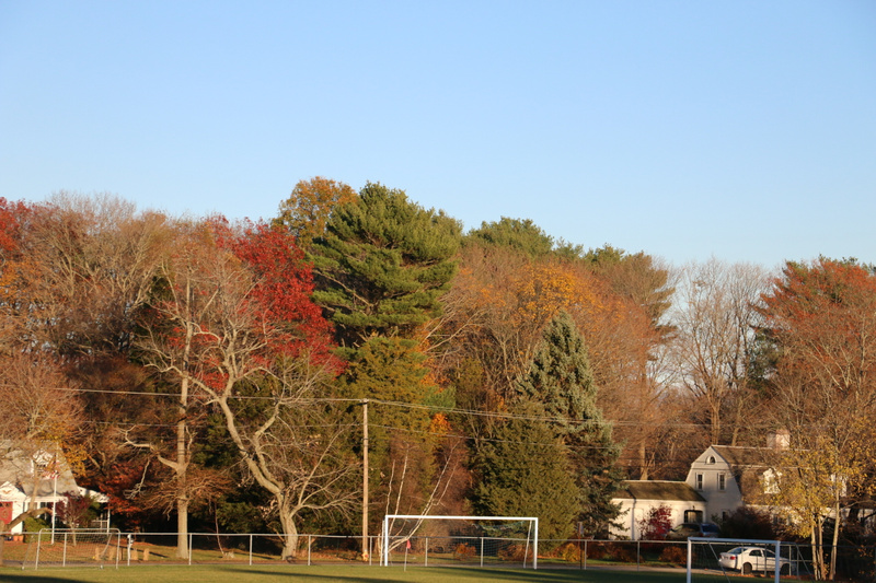 Fall colors, Scituate