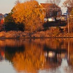 2015-12-05-Cohasset, MA-Reflections on Straits Pond