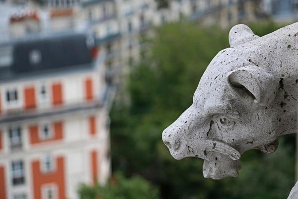 A gargoyle of Sacré-Cœur