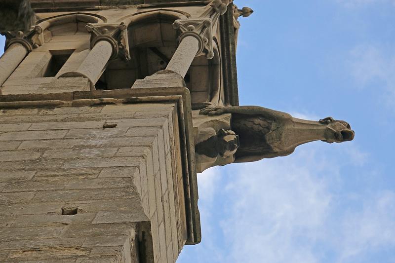 Gargoyle-Notre Dame Cathedral