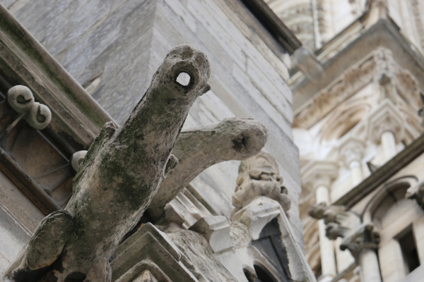 Some Gargoyles have been badly eroded by time, water and pollution