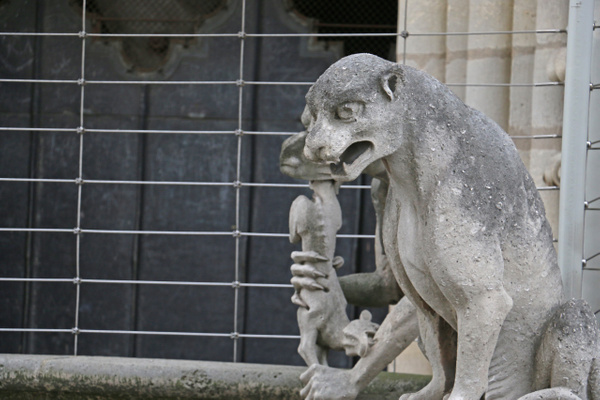 Chimera, Cathedral of Notre Dame
