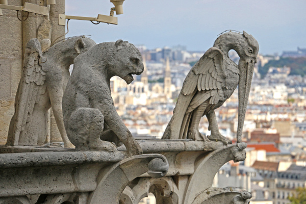 Chimeras, Cathedral of Notre Dame