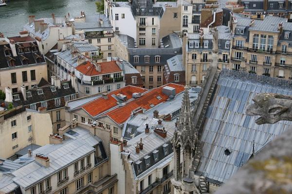 Rooftops on Isle de la Cite