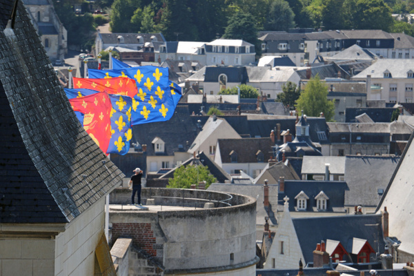 View from Château d'Amboise