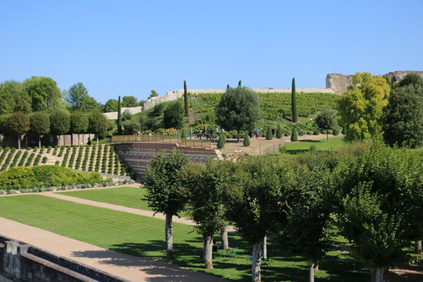 The chateau's extensive gardens