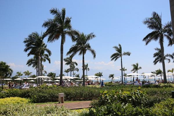 La Punta pool area at The Grande Luxxe  (Monday)
