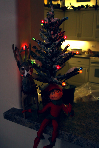 2012 Christmas at Barbs House by LaurieKelley