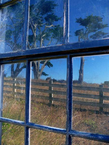 Windows at Pierce Point Ranch