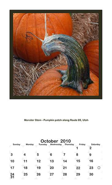 2010 Y P October
