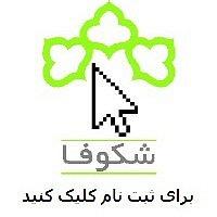 shokufa by AliHooy