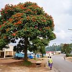 Gikongoro