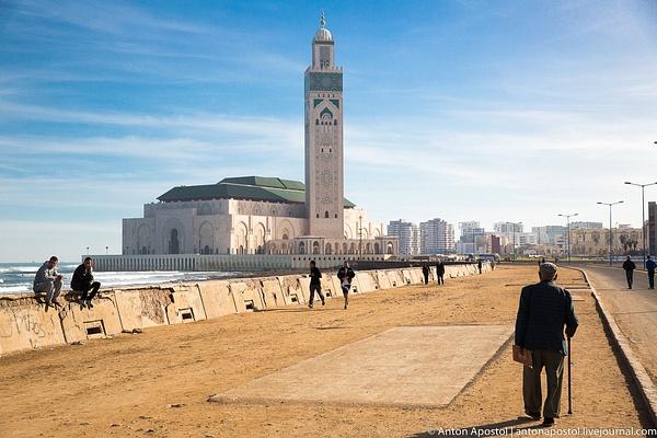 Casablanca by Anton Apostol