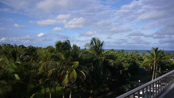 Balcony View Crandom and Ocean by Carlos Schopenhauer