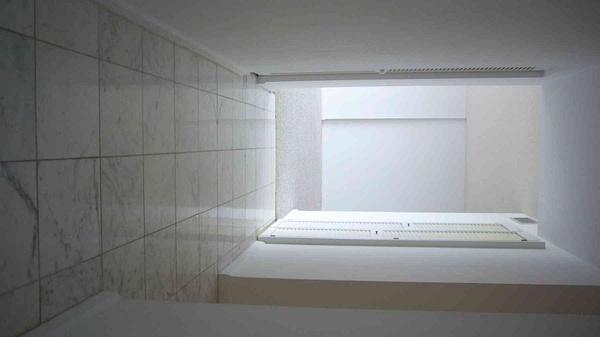 Hall by Carlos Schopenhauer