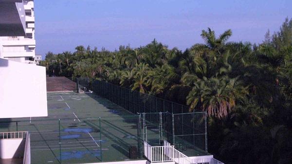 Tennis Courts by Carlos Schopenhauer