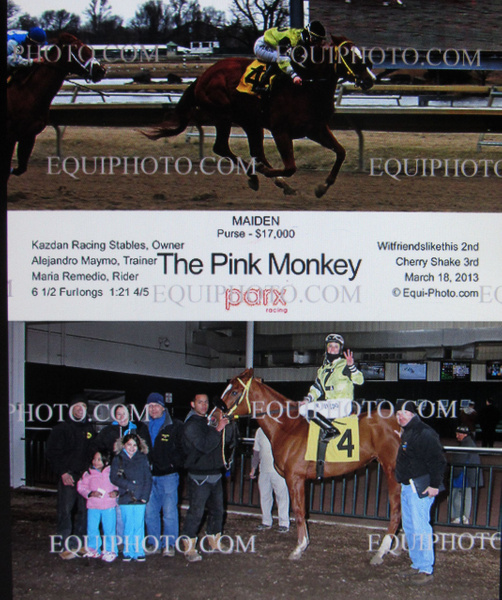 The Pink Monkey by Maria Remedio