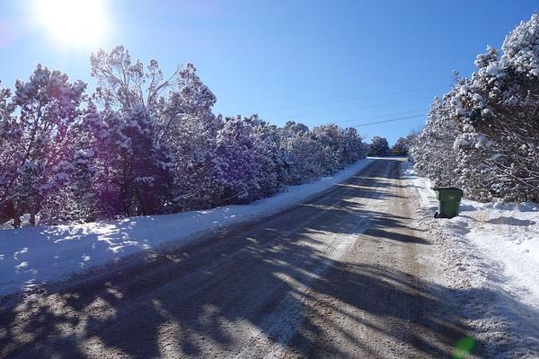 Snow day by RogerDahl