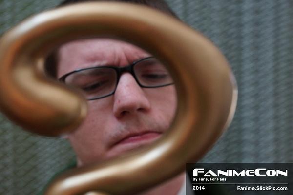 FanimeCon by Fanime2014