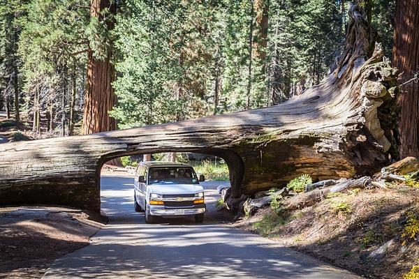 Yosemite by Vitaliy Teslya
