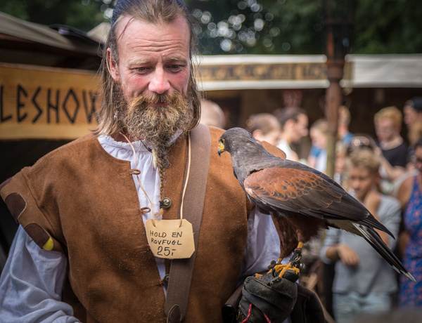 Horsens Medieval Festival by VitaliyTeslya